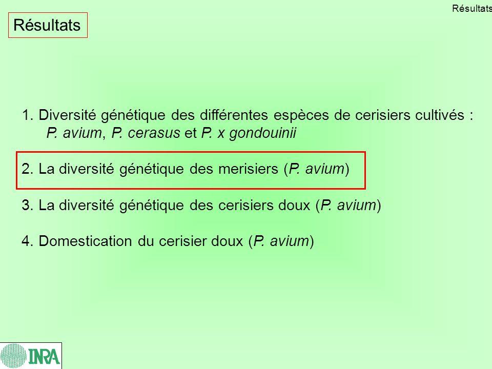 1. Diversité génétique des différentes espèces de cerisiers cultivés : P. avium, P. cerasus et P. x gondouinii 2. La diversité génétique des merisiers