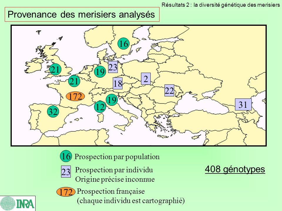 MicrosatellitesNombre dallèles détectés UDP9600516 allèles PCEGA3426 allèles PS12A0213 allèles UDP9600112 allèles UDP98409 4 allèles PCHGMS114 allèles Les marqueurs microsatellites Microsatellite PS12A08 : 8 allèles détectés sur 18 génotypes 85 allèles Résultats 2 : la diversité génétique des merisiers