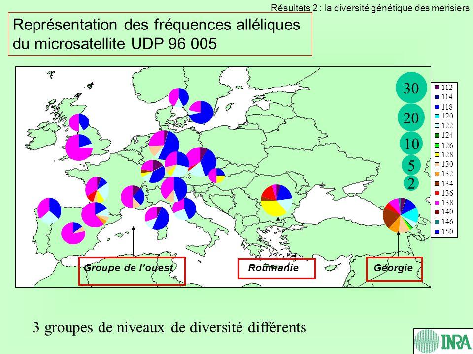 Représentation des fréquences alléliques du microsatellite UDP 96 005 3 groupes de niveaux de diversité différents 112 114 118 120 122 124 126 128 130