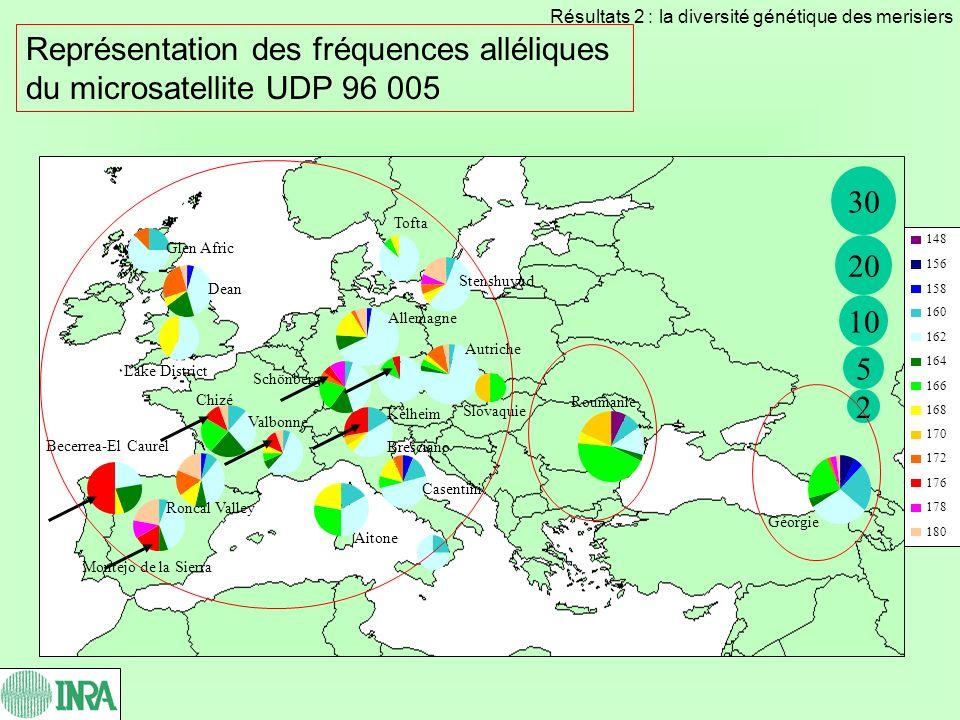Représentation des fréquences alléliques du microsatellite UDP 96 005 148 156 158 160 162 164 166 168 170 172 176 178 180 30 20 2 10 5 Bresciano Autri
