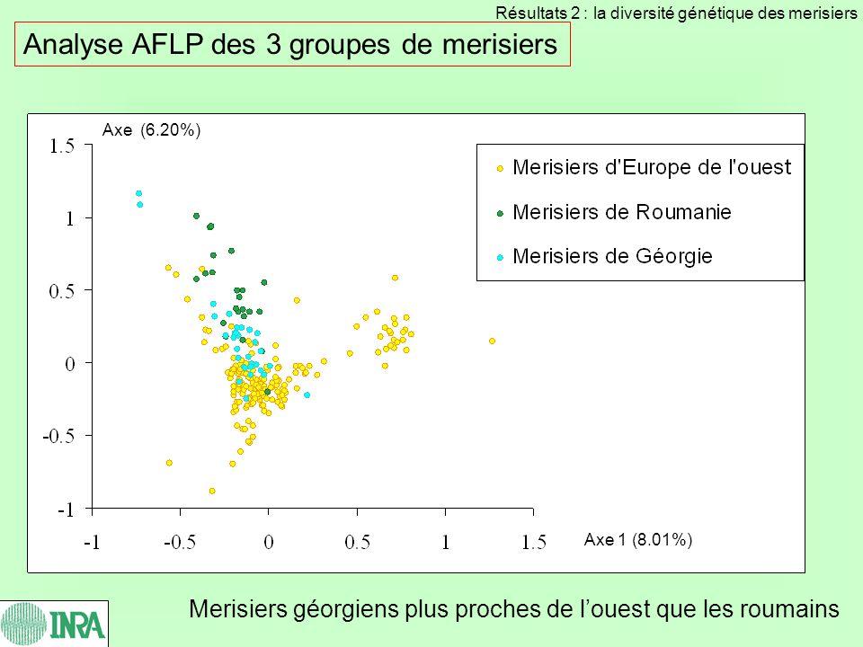 Analyse AFLP des 3 groupes de merisiers Merisiers géorgiens plus proches de louest que les roumains Axe 1 (8.01%) Axe (6.20%) Résultats 2 : la diversi