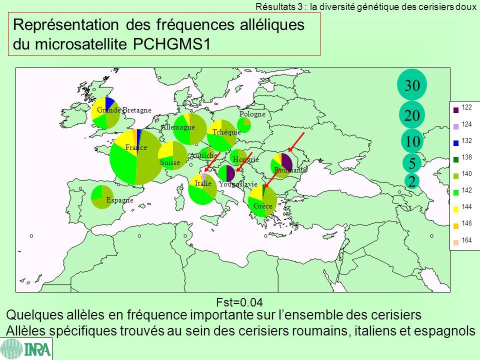 1.Diversité génétique des différentes espèces de cerisiers cultivés : P.