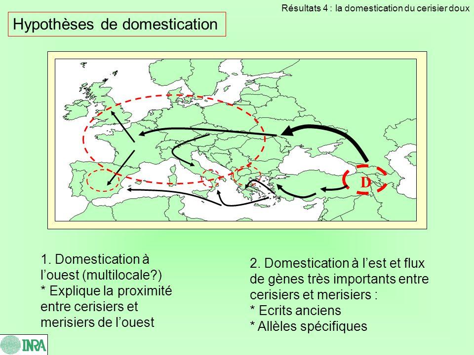 Hypothèses de domestication 2. Domestication à lest et flux de gènes très importants entre cerisiers et merisiers : * Ecrits anciens * Allèles spécifi