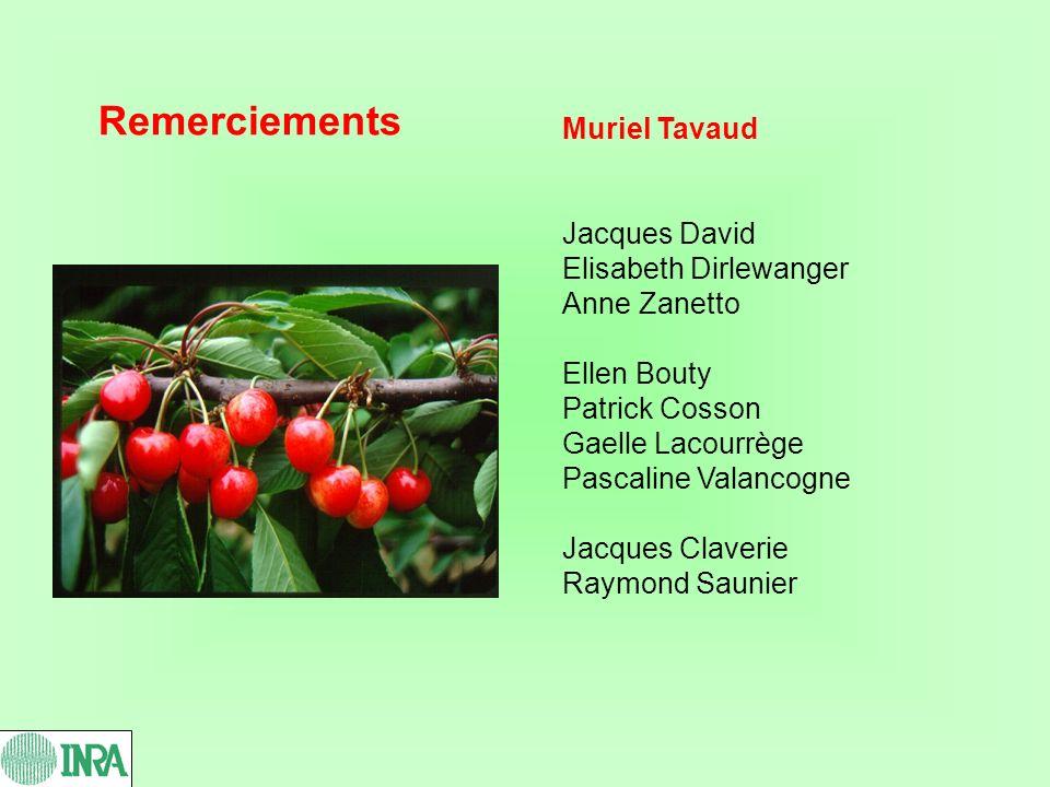 Remerciements Muriel Tavaud Jacques David Elisabeth Dirlewanger Anne Zanetto Ellen Bouty Patrick Cosson Gaelle Lacourrège Pascaline Valancogne Jacques