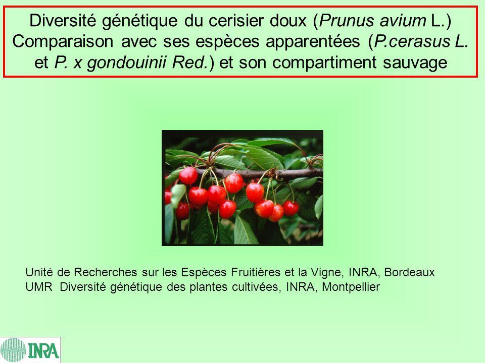 Diversité génétique du cerisier doux (Prunus avium L.) Comparaison avec ses espèces apparentées (P.cerasus L. et P. x gondouinii Red.) et son comparti