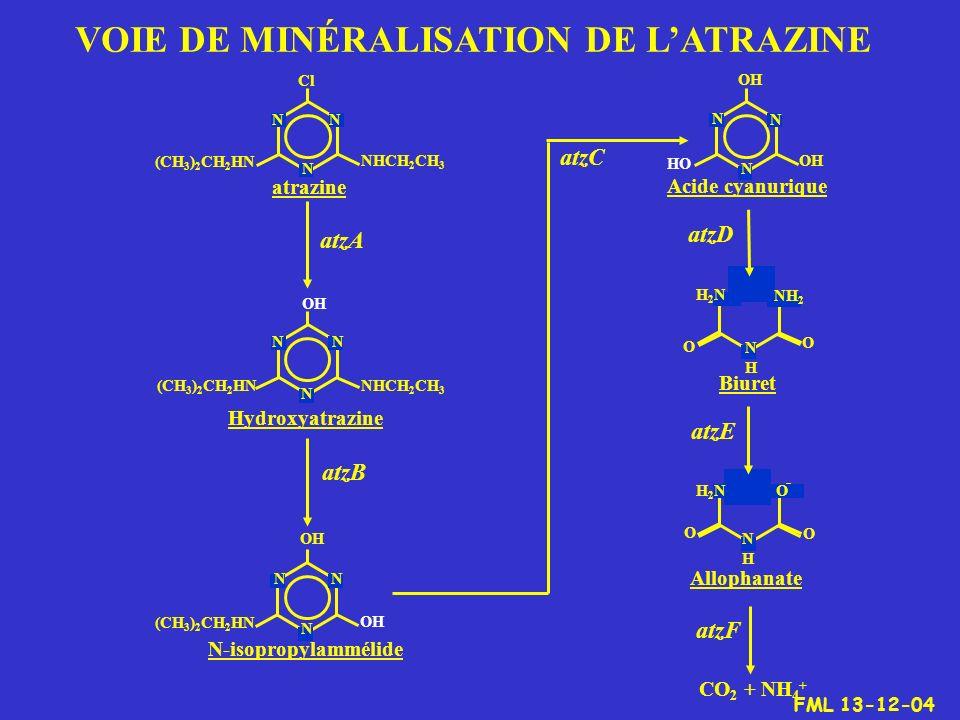 NN N NHCH 2 CH 3 (CH 3 ) 2 CH 2 HN Cl atrazine OH NN N NHCH 2 CH 3 (CH 3 ) 2 CH 2 HN Hydroxyatrazine atzA Acide cyanurique N-isopropylammélide NN N OH