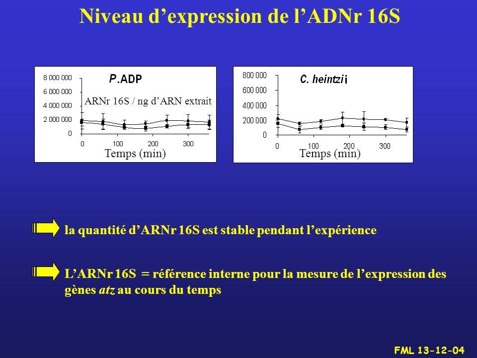 Niveau dexpression de lADNr 16S la quantité dARNr 16S est stable pendant lexpérience LARNr 16S = référence interne pour la mesure de lexpression des g