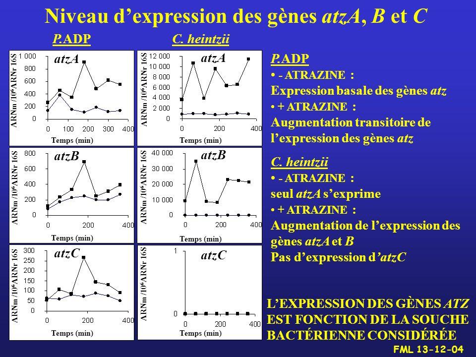 Niveau dexpression des gènes atzA, B et C LEXPRESSION DES GÈNES ATZ EST FONCTION DE LA SOUCHE BACTÉRIENNE CONSIDÉRÉE P.ADP - ATRAZINE : Expression bas