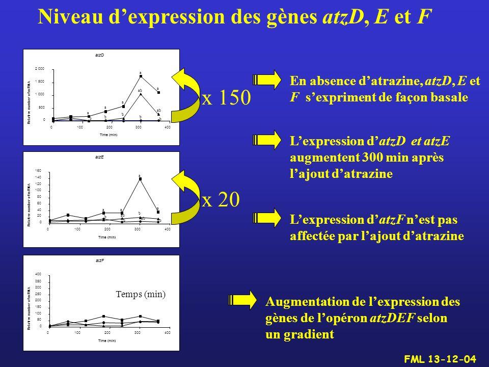 Niveau dexpression des gènes atzD, E et F En absence datrazine, atzD, E et F sexpriment de façon basale Lexpression datzD et atzE augmentent 300 min a