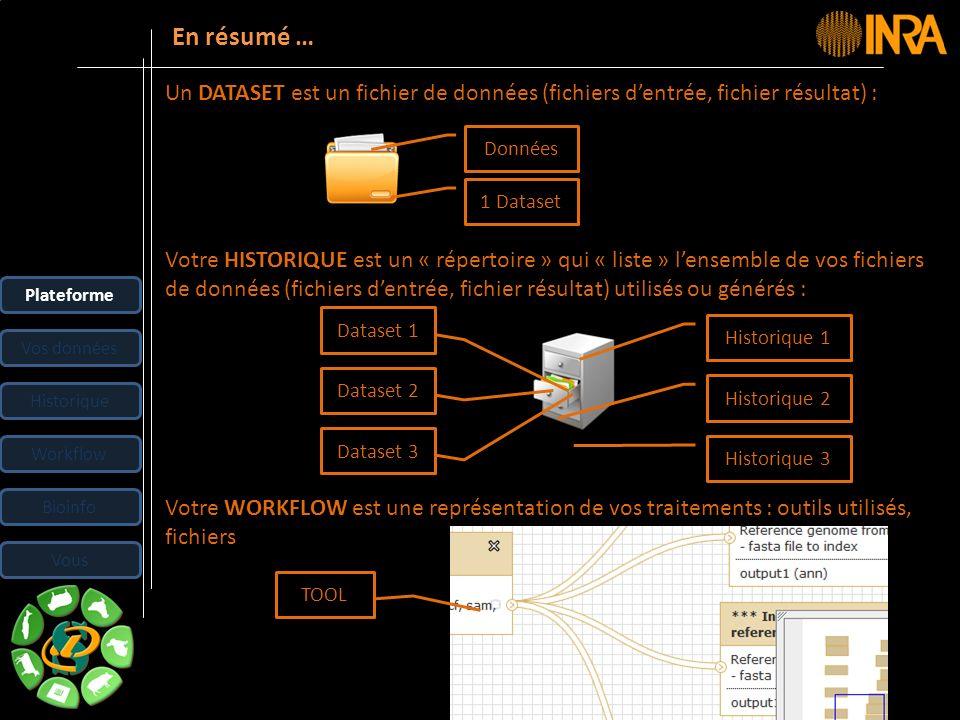 -- 20 -- En résumé … Plateforme Vos données Historique Workflow Bioinfo Vous Un DATASET est un fichier de données (fichiers dentrée, fichier résultat)