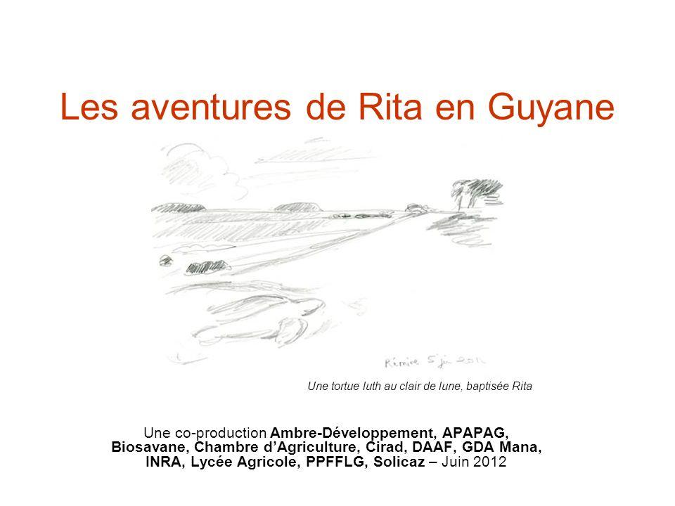 Les aventures de Rita en Guyane Une co-production Ambre-Développement, APAPAG, Biosavane, Chambre dAgriculture, Cirad, DAAF, GDA Mana, INRA, Lycée Agr