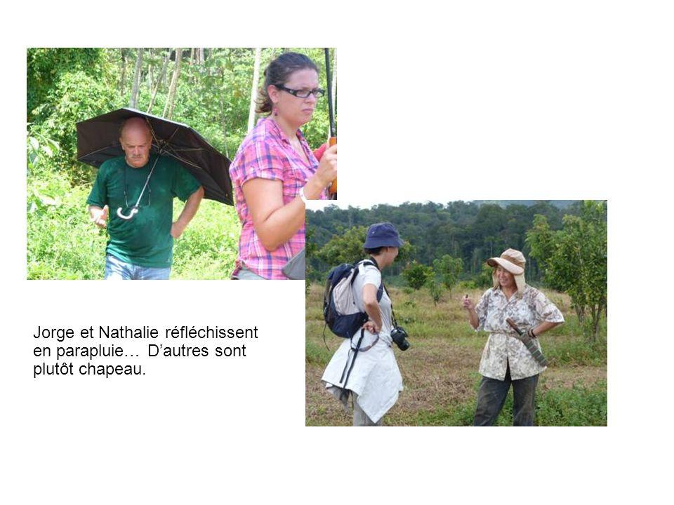 Jorge et Nathalie réfléchissent en parapluie… Dautres sont plutôt chapeau.