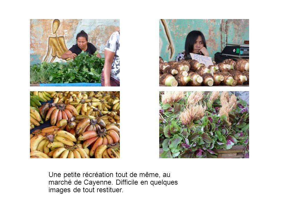 Une petite récréation tout de même, au marché de Cayenne. Difficile en quelques images de tout restituer.