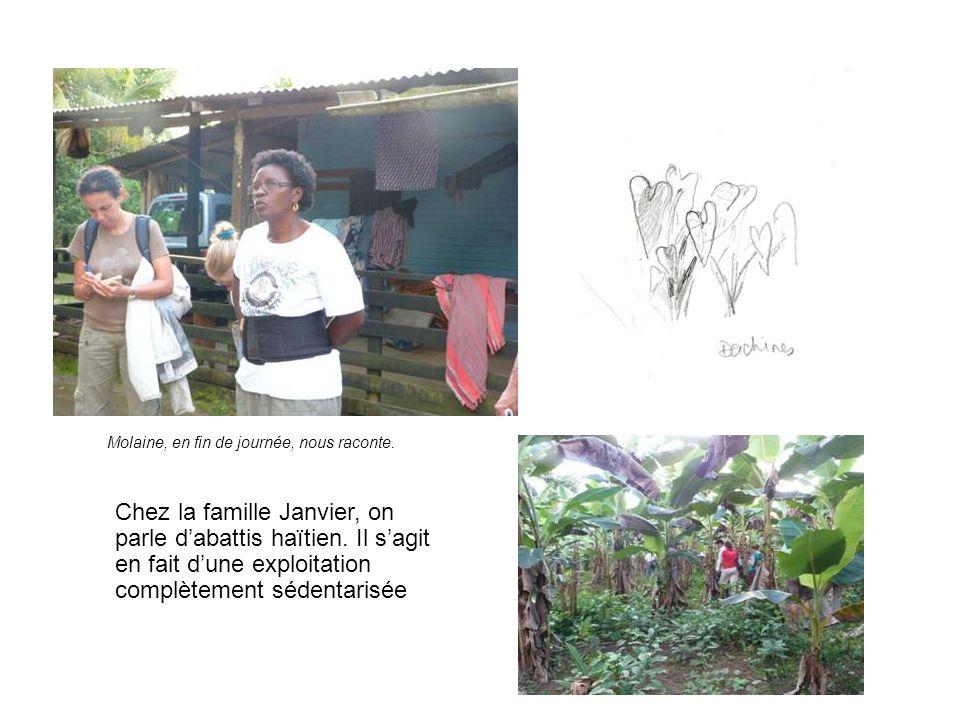 Chez la famille Janvier, on parle dabattis haïtien.