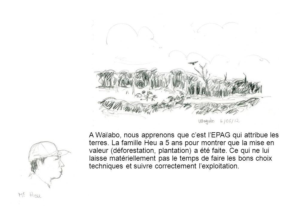 A Waïabo, nous apprenons que cest lEPAG qui attribue les terres. La famille Heu a 5 ans pour montrer que la mise en valeur (déforestation, plantation)