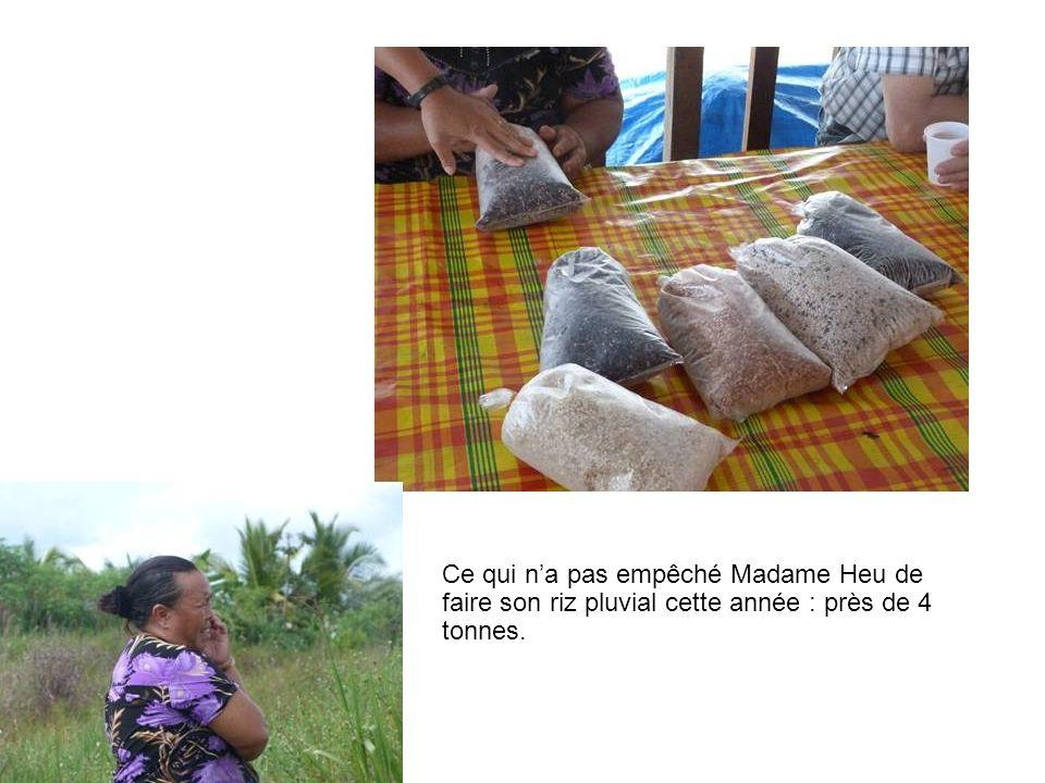 Ce qui na pas empêché Madame Heu de faire son riz pluvial cette année : près de 4 tonnes.