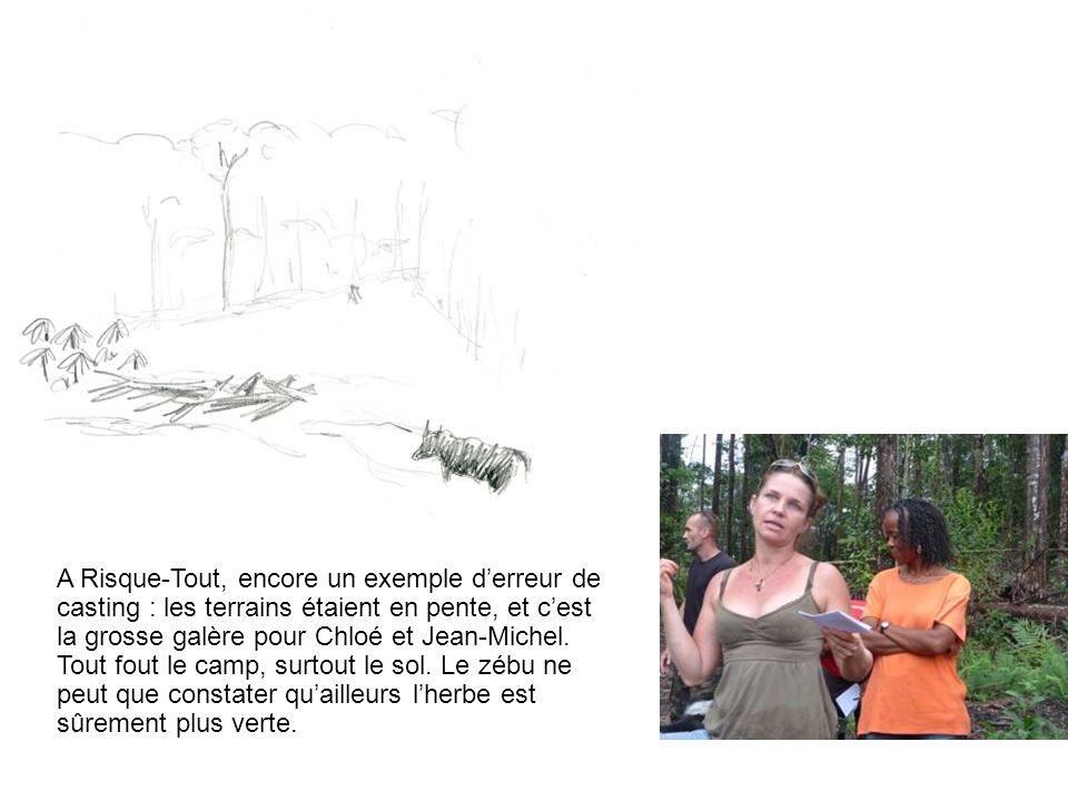 A Risque-Tout, encore un exemple derreur de casting : les terrains étaient en pente, et cest la grosse galère pour Chloé et Jean-Michel. Tout fout le