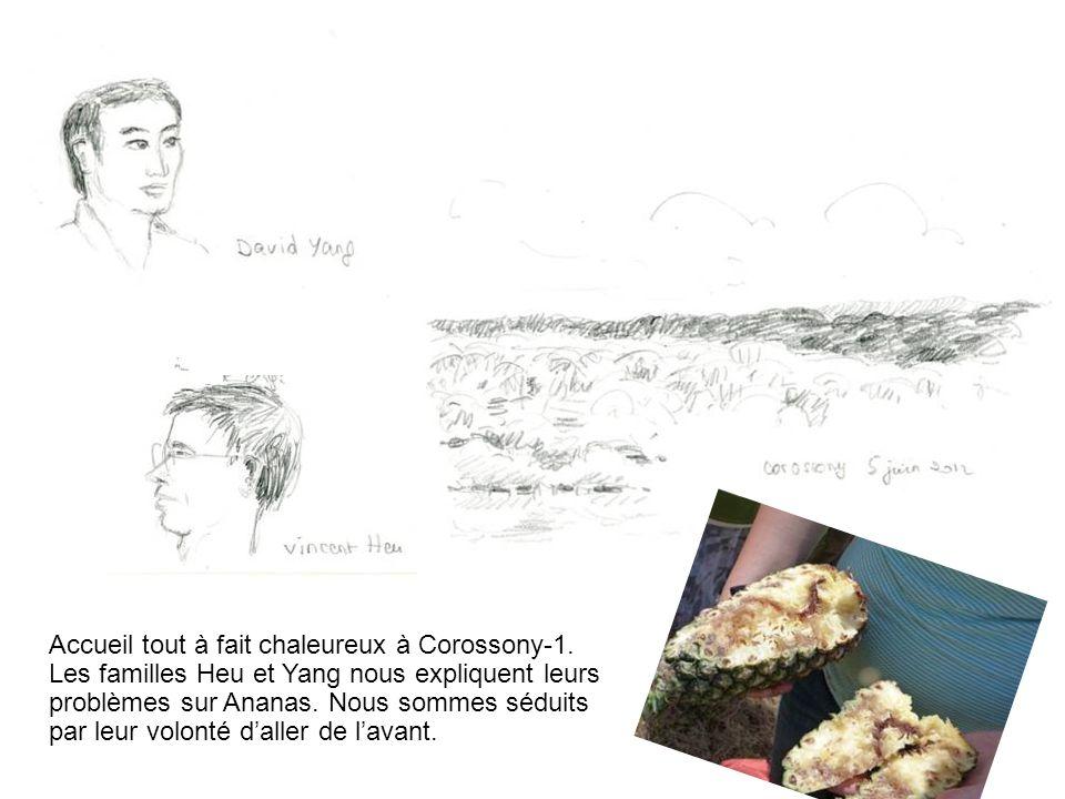 Accueil tout à fait chaleureux à Corossony-1. Les familles Heu et Yang nous expliquent leurs problèmes sur Ananas. Nous sommes séduits par leur volont