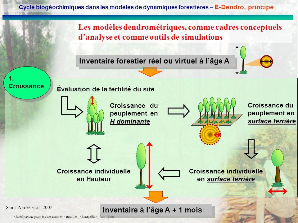 Modélisation pour les ressources naturelles, Montpellier, Juin 2008 Les modèles dendrométriques, comme cadres conceptuels danalyse et comme outils de