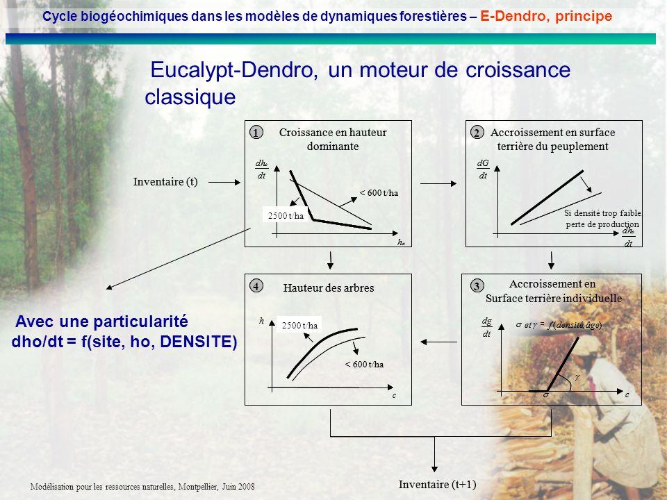 Modélisation pour les ressources naturelles, Montpellier, Juin 2008 Eucalypt-Dendro, un moteur de croissance classique Avec une particularité dho/dt =