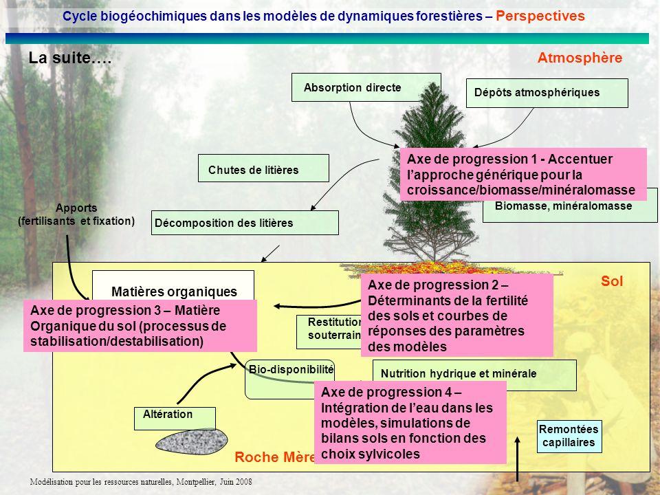 Modélisation pour les ressources naturelles, Montpellier, Juin 2008 Dépôts atmosphériques Absorption directe Matières organiques du sol Chutes de liti