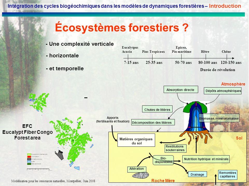Modélisation pour les ressources naturelles, Montpellier, Juin 2008 Écosystèmes forestiers ? - horizontale EFC Eucalypt Fiber Congo Forest area - et t
