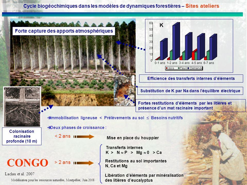 Modélisation pour les ressources naturelles, Montpellier, Juin 2008 Forte capture des apports atmosphériques boisFeuille Demande 0 10 20 30 40 50 60 0