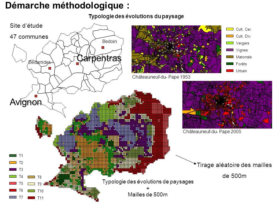 Démarche méthodologique : Typologie des évolutions du paysage Avignon Carpentras Bédarrides Bedoin Site détude 47 communes Châteauneuf-du- Pape 1953 C