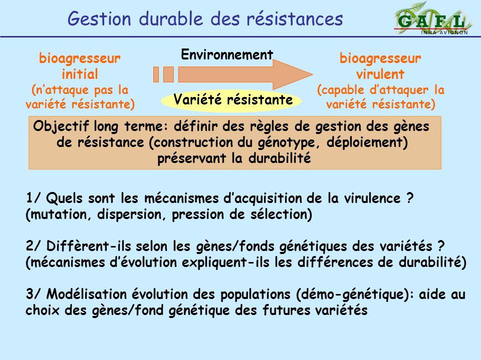 Objectif long terme: définir des règles de gestion des gènes de résistance (construction du génotype, déploiement) préservant la durabilité bioagresse