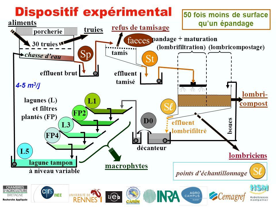 Recyclage des éléments sorties N 2 & matières organiques sorties matières organiques & plantes entrées=sorties si stoechiométrie K >> P > N