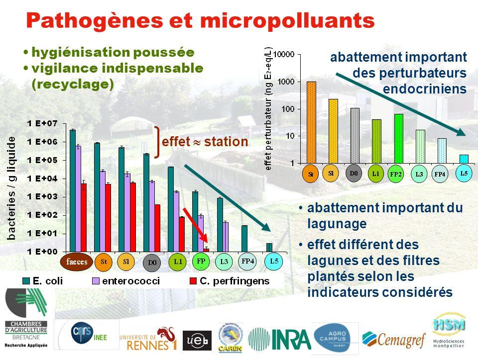 Pathogènes et micropolluants effet station hygiénisation poussée vigilance indispensable (recyclage) abattement important des perturbateurs endocriniens abattement important du lagunage effet différent des lagunes et des filtres plantés selon les indicateurs considérés