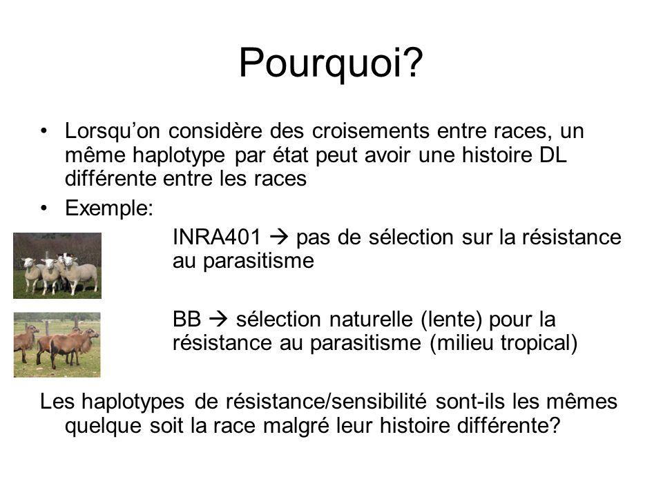 Pourquoi? Lorsquon considère des croisements entre races, un même haplotype par état peut avoir une histoire DL différente entre les races Exemple: IN