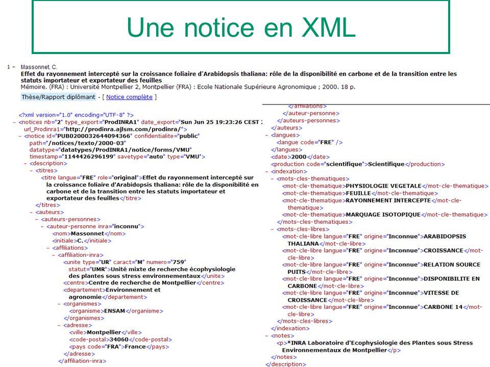Une notice en XML