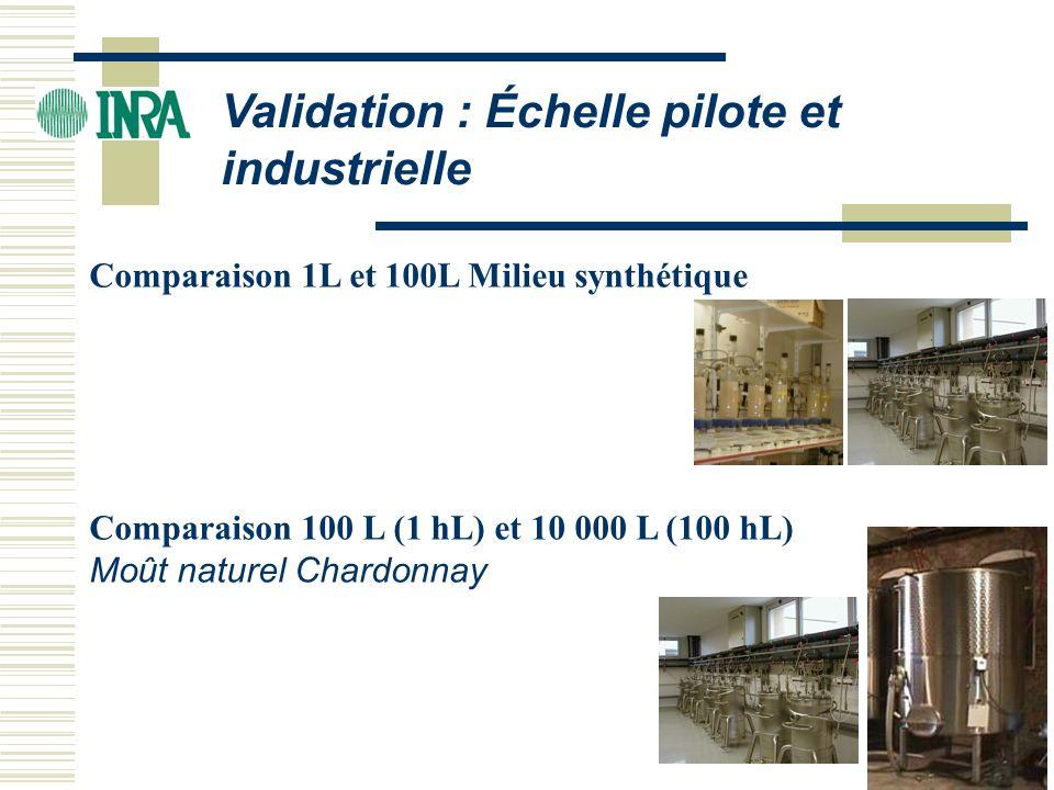 Validation : Échelle pilote et industrielle Comparaison 1L et 100L Milieu synthétique Comparaison 100 L (1 hL) et 10 000 L (100 hL) Moût naturel Chard