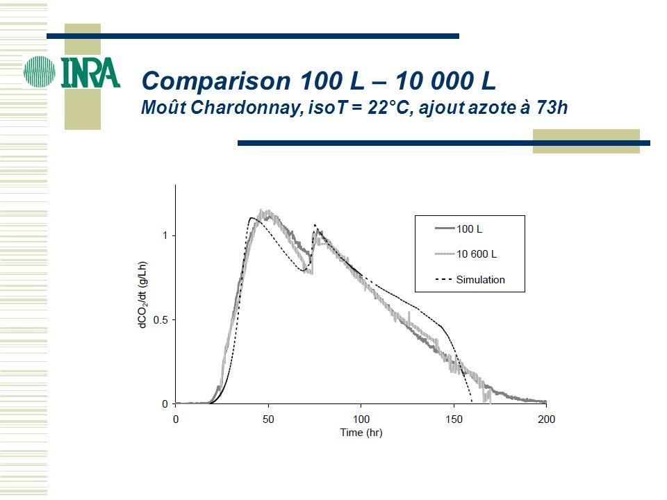 Comparison 100 L – 10 000 L Moût Chardonnay, isoT = 22°C, ajout azote à 73h