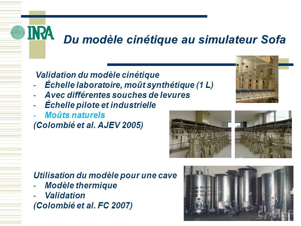 Validation du modèle cinétique -Échelle laboratoire, moût synthétique (1 L) -Avec différentes souches de levures -Échelle pilote et industrielle -Moût