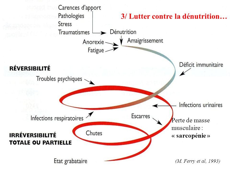 (M. Ferry et al, 1993) Perte de masse musculaire : « sarcopénie » 3/ Lutter contre la dénutrition…