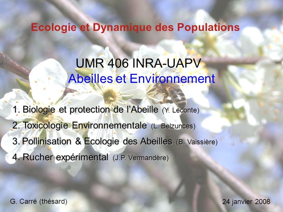 Ecologie et Dynamique des Populations 1.Biologie et protection de lAbeille (Y.
