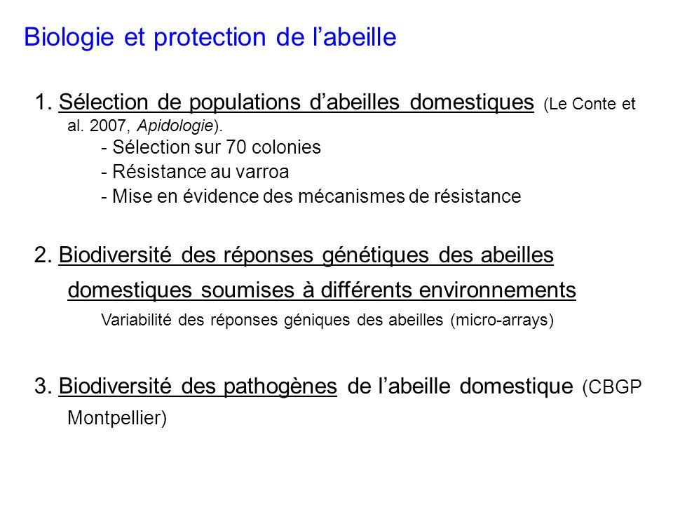 Biologie et protection de labeille 1.