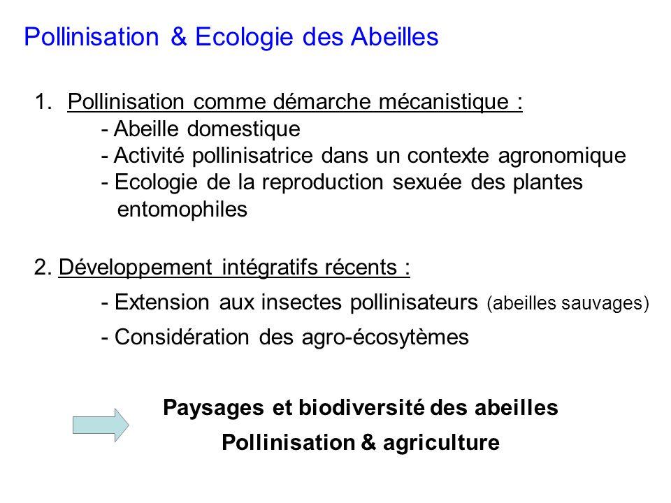 Pollinisation & Ecologie des Abeilles 1.Pollinisation comme démarche mécanistique : - Abeille domestique - Activité pollinisatrice dans un contexte agronomique - Ecologie de la reproduction sexuée des plantes entomophiles 2.
