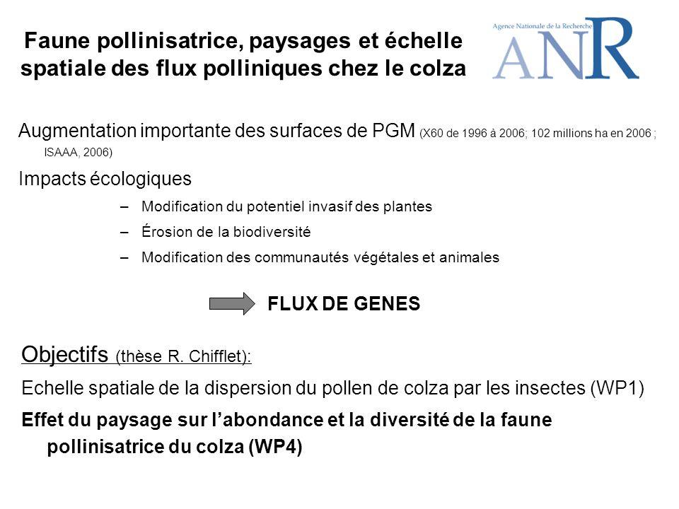Faune pollinisatrice, paysages et échelle spatiale des flux polliniques chez le colza Objectifs (thèse R.