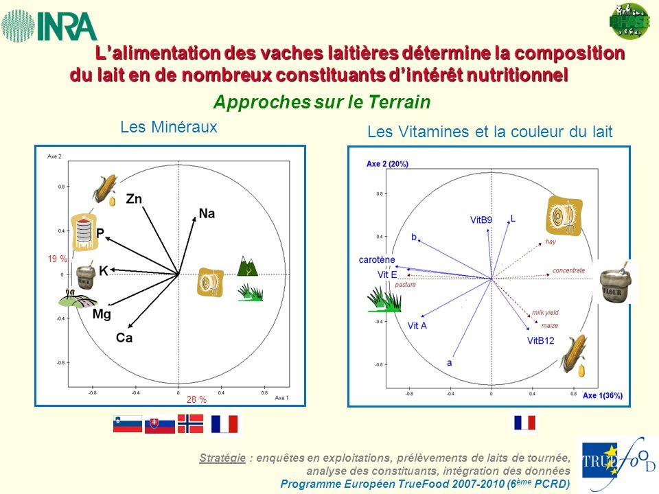Lalimentation des vaches laitières détermine la composition du lait en de nombreux constituants dintérêt nutritionnel Lalimentation des vaches laitièr