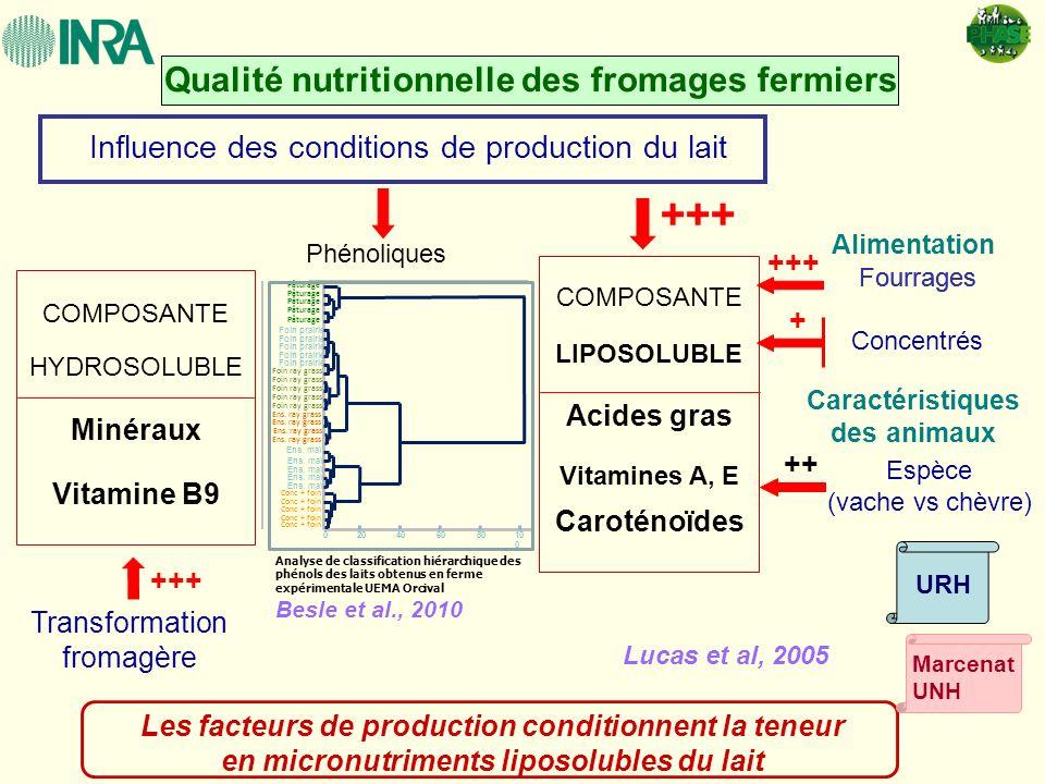 Qualité nutritionnelle des fromages fermiers Influence des conditions de production du lait Phénoliques Lucas et al, 2005 +++ Concentrés Fourrages Car