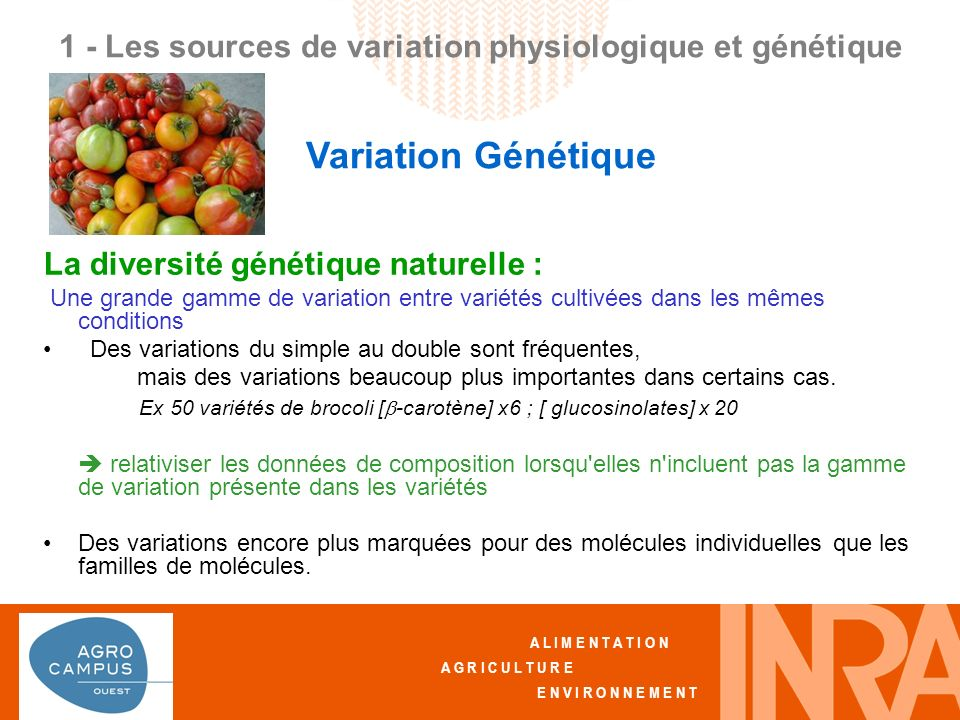 A L I M E N T A T I O N A G R I C U L T U R E E N V I R O N N E M E N T La diversité génétique naturelle : Une grande gamme de variation entre variétés cultivées dans les mêmes conditions Des variations du simple au double sont fréquentes, mais des variations beaucoup plus importantes dans certains cas.