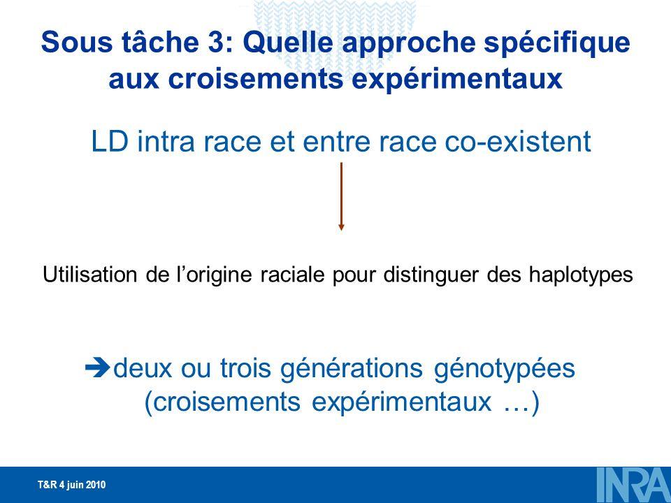 T&R 4 juin 2010 Sous tâche 3: Quelle approche spécifique aux croisements expérimentaux LD intra race et entre race co-existent Utilisation de lorigine raciale pour distinguer des haplotypes deux ou trois générations génotypées (croisements expérimentaux …)