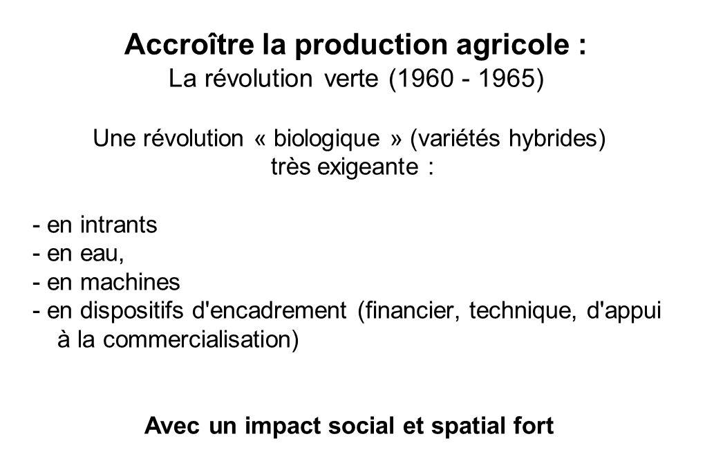 Accroître la production agricole : La révolution verte (1960 - 1965) Une révolution « biologique » (variétés hybrides) très exigeante : - en intrants - en eau, - en machines - en dispositifs d encadrement (financier, technique, d appui à la commercialisation) Avec un impact social et spatial fort