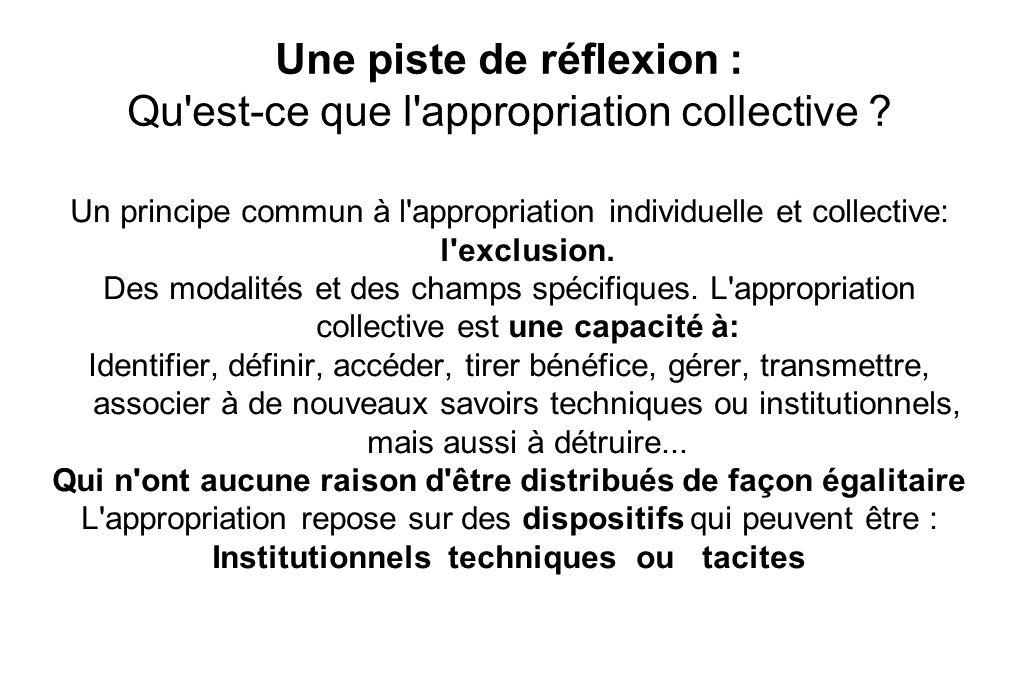 Une piste de réflexion : Qu est-ce que l appropriation collective .