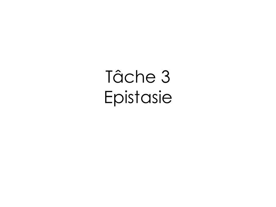 Tâche 3 Epistasie