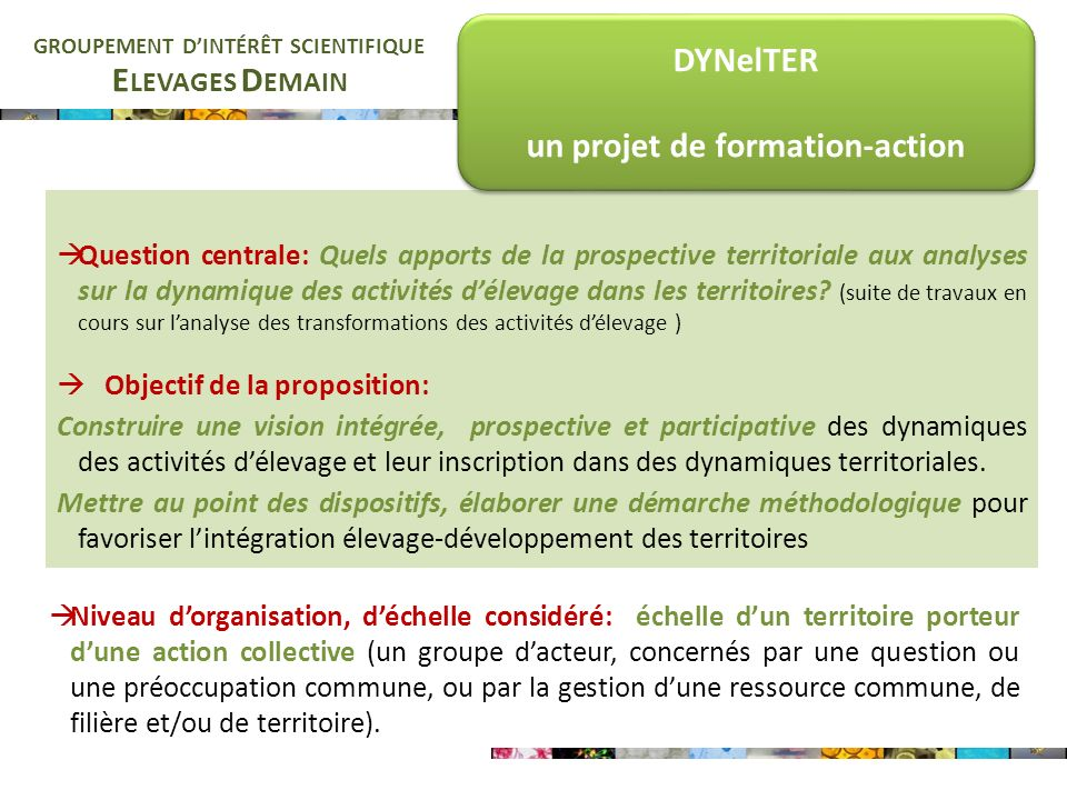 E LEVAGES D EMAIN GROUPEMENT DINTÉRÊT SCIENTIFIQUE Question centrale: Quels apports de la prospective territoriale aux analyses sur la dynamique des a