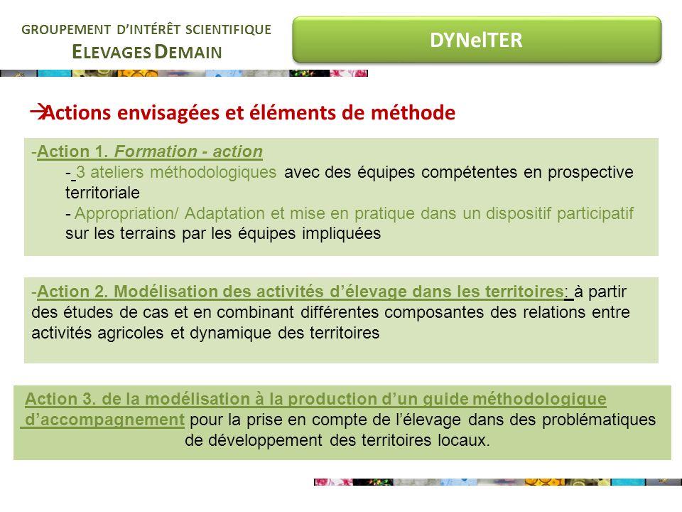 E LEVAGES D EMAIN GROUPEMENT DINTÉRÊT SCIENTIFIQUE DYNelTER Actions envisagées et éléments de méthode -Action 2.